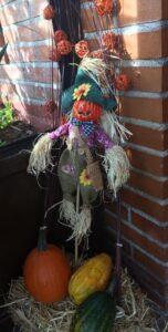 Espantapájaros terrorífico y calabazas por la fiesta de Halloween